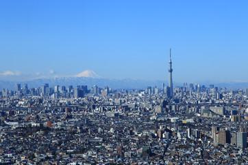 東京都心の風景 富士山とスカイツリー