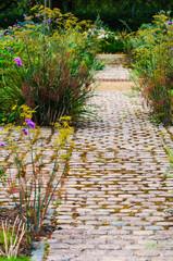 English flower and foliage garden and footpath walk way