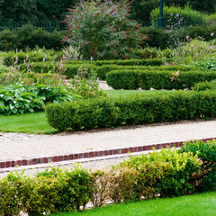 English garden and footpath square composition