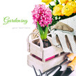 Garden tools and spring flowers