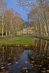 Platane, Beaurecueil, 13,Bouches-du-Rhône