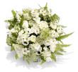 canvas print picture - Blumenstrauß in Weiß