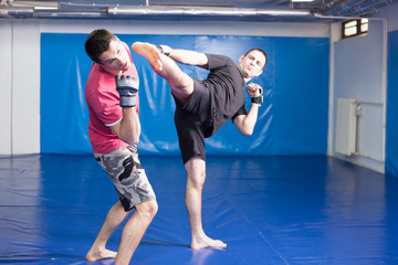 kick in the beard during box training