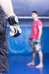 mma fight training