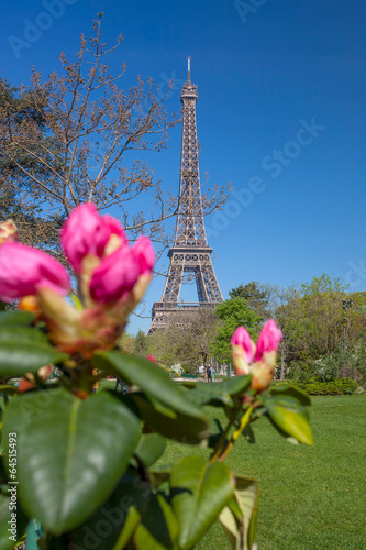 Eiffel Tower during spring time in Paris, France - 64515493