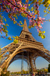 Eiffel Tower during spring time in Paris, France - 64515613