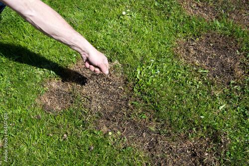 Leinwanddruck Bild Rasenpflege