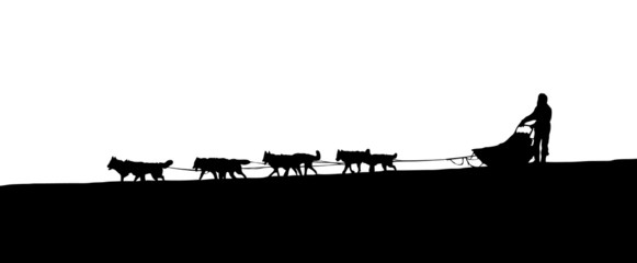 silhouette of a dog sled