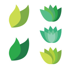 Leaf Pair Icon Vector Illustrations on Both Solid