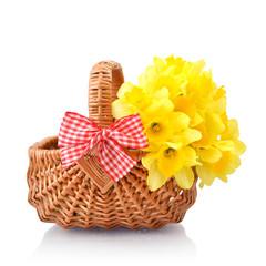 Daffodils in wicker basket