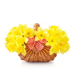 Daffodils in wicker basket