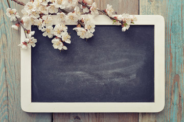 Branch with framed blackboard