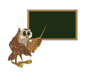 Owl-teacher stands at the blackboard