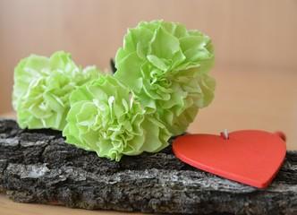 Grüne Nelke auf Holz mit Herz