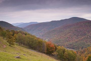 Fall Mountain Scenic