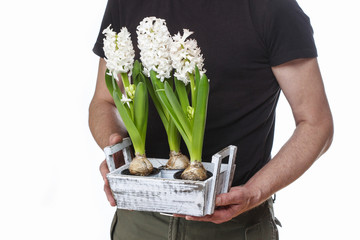 Man holding hyacinth flowers isolated on white background