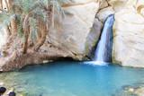 Desert Oasis, Chebika, Tunisia - 64522895