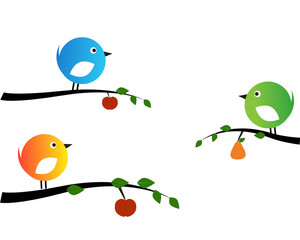 Birds and fruits