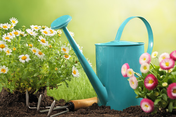 Gardening tools and flower
