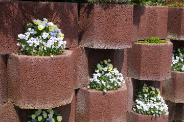 Blumenkübel Wand