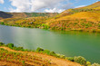 Valley of  Douro