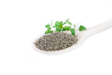 fresh and dried thyme