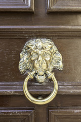 Caller shaped golden lion