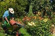 Garten 117