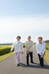 屋外でストレッチをする3人の高齢者の女性