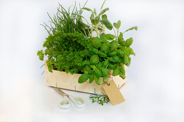 Kiste mit Gartenkräuter