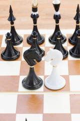 black and white knights in front of black chess