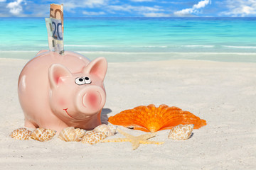 Rosa Sparschwein mit Geldscheinen am Sandstrand
