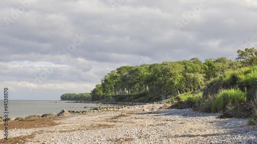 Puttgarden, Küste, Fehmarn, Insel, Sommer, Deutschland - 64538870
