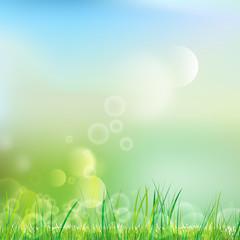 Natürliches Grün - Hintergrund