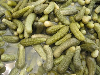 Pepinillos en vinagre. Pickles of cucumbers.