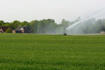 Bewässerung eines Feldes