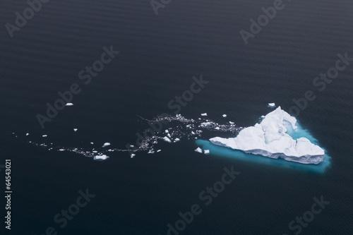 Foto op Canvas Antarctica 2 Melting iceberg
