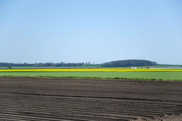 Rural landscape patterns