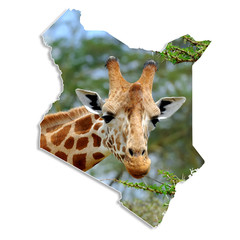Kenya map with giraffe