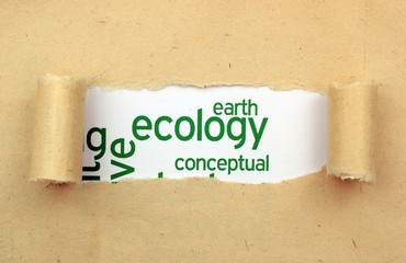 Ecology earth