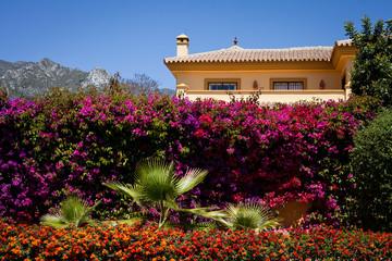 Hiszpania dom kolorowy góry kwiaty