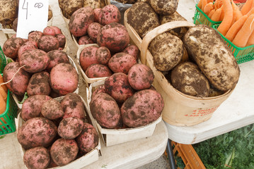 Organic Potatoes at Farmers Market