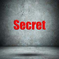 Secret concrete wall