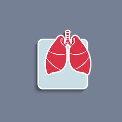 Vector paper-cut  icon with human organ lungs