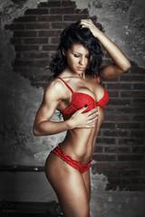 beautiful dark haired girl in sexy lingerie posing over brick wa