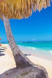 palm tree with straw umbrella on a beautiful beach
