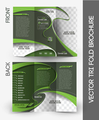 Dental Tri-fold Mock up & Brochure Design