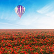 Air Balloon over Ref Flower Field