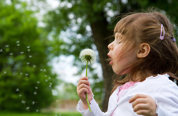 Lovely little blond little girl blowing a dandelion