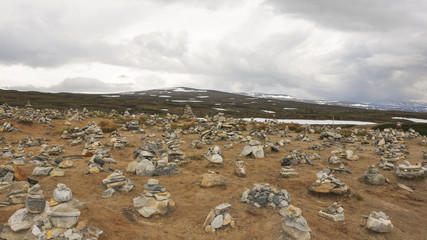 Saltfjell, Hochebene, Nationalpark, Sommer, Norwegen